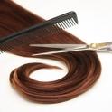 Sh/coupe/coiffage (cheveu long)